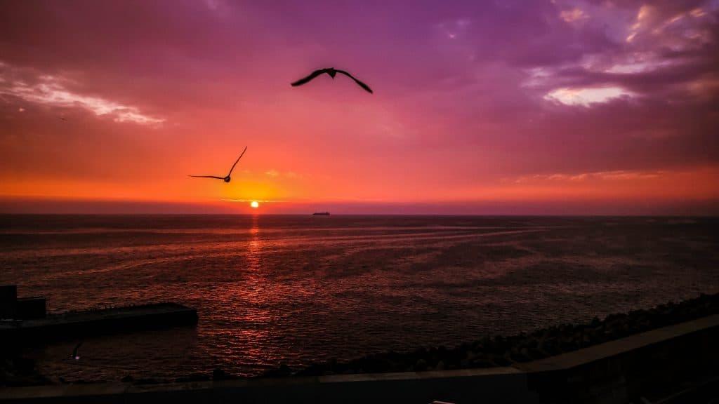 Port of Civitavecchia - Sail away sunset