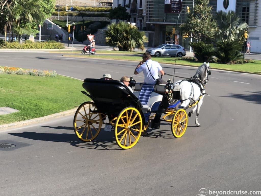 Malaga horse and cart